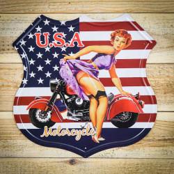USA motor tabliczka