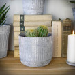 osłonki doniczkowe kaktus
