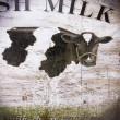 świeże mleko