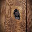 Naturalne sęki w drzwiach