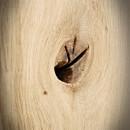 sęki i pęknięcia w blatch drewnianych z dębu