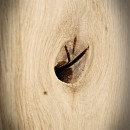 sęki i dziury po sękach w blatach drewnianych