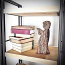 regały, regał, półka na książki